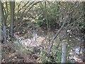 SP1464 : Fenced pond below May's Hill Farm by Robin Stott