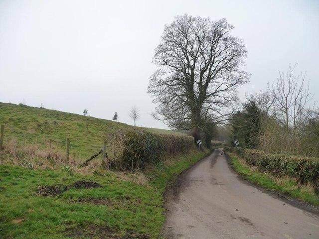 Leppington Lane