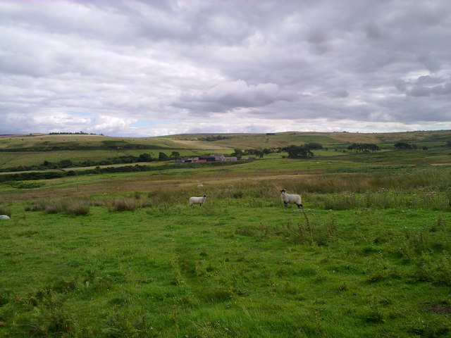 Looking over the moor towards Middles Farm