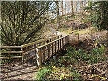 NS4276 : Footbridge over the Overtoun Burn by Alec MacKinnon