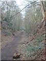 SO8792 : Railway Path View by Gordon Griffiths