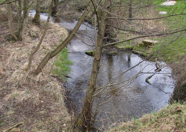 Dalby Beck, upstream view
