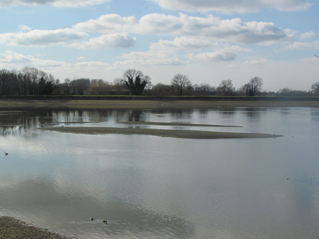 Temporary Islands in Startops Reservoir