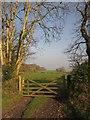 SX3286 : Gate near South Lodge by Derek Harper