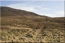 NR3977 : Old Boundary near Bolsa, Islay by Becky Williamson