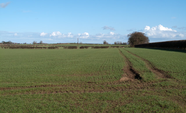 Field east of B6275