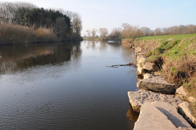 River bank defences, Severn Stoke