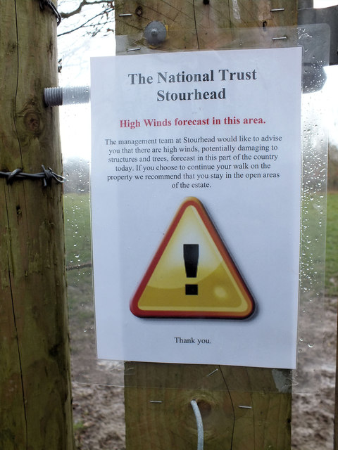 Beware of low flying trees!