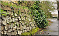 J3470 : Drystone wall, Belfast by Albert Bridge