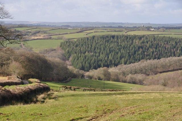 Mid Devon : Ash Cross Scenery