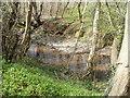 ST1793 : Pebbly Sirhowy north of Ynysddu by Jaggery