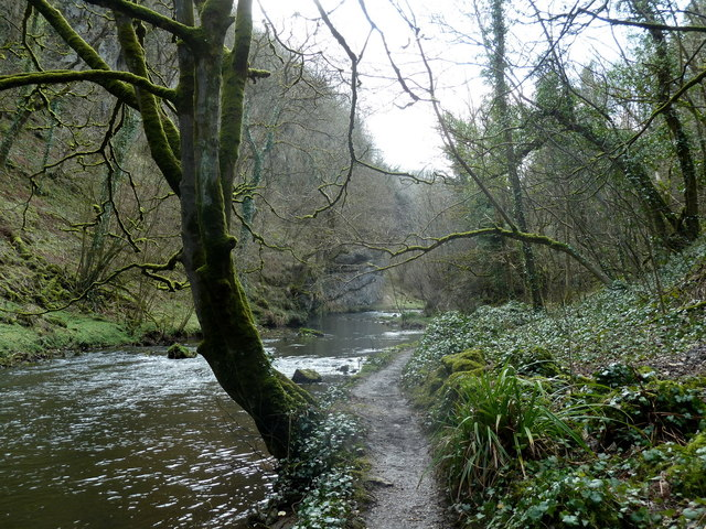 By the River Wye in Chee Dale