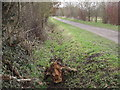 TQ1861 : Path by West Park Farm by Colin Smith