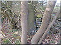 SE2900 : Inverted cut benchmark on a gatepost on Cote Lane by John Slater
