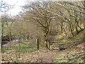 SE2701 : Footpath by the River Don near Thurgoland Bridge by John Slater