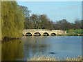 TQ4871 : Five Arch Bridge by Robin Webster