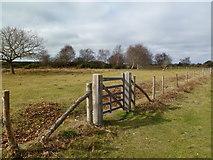 SZ0284 : Godlingston Heath, gate by Mike Faherty