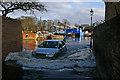 TQ1673 : Spring tide, Eel Pie Island, Twickenham by Julian Osley