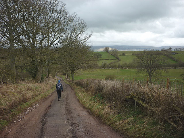 Walking down Hoggs Lane, King's Meaburn