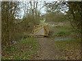 TQ0451 : Footbridge, Clandon Park by Alan Hunt