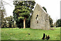J5253 : Killowen church, Killyleagh (1) by Albert Bridge