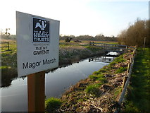 ST4286 : Magor Marsh wildlife reserve, Magor, near Newport by Ruth Sharville