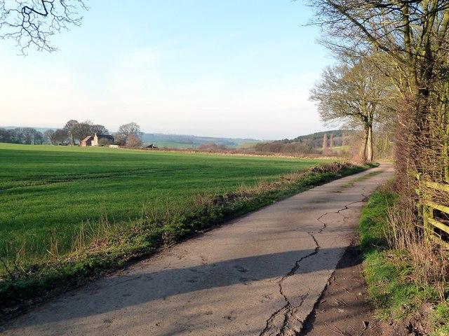 Track to Fall Head Farm