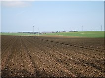 TR3153 : Field by Northbourne Road by Oast House Archive