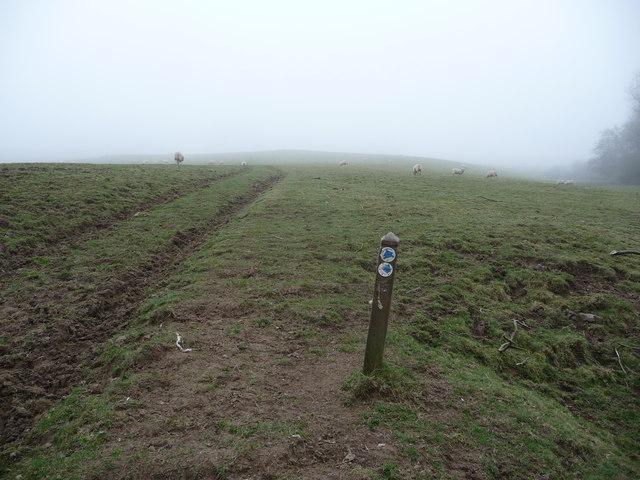 Bridleway waymarker on a bridleway near Five Turnings