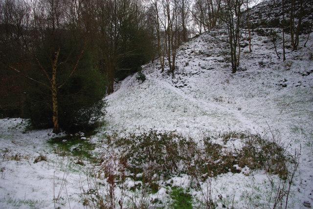 A steep hillside in Martin Wood, Mytholmroyd