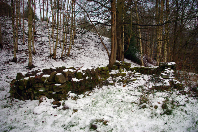 Remains of structure in Martin Wood, Mytholmroyd