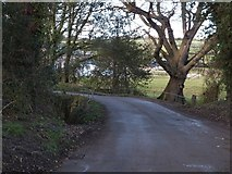 SW9865 : Bridge north of Treliver  by David Smith