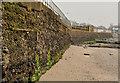 J3582 : The seawall, Whiteabbey by Albert Bridge