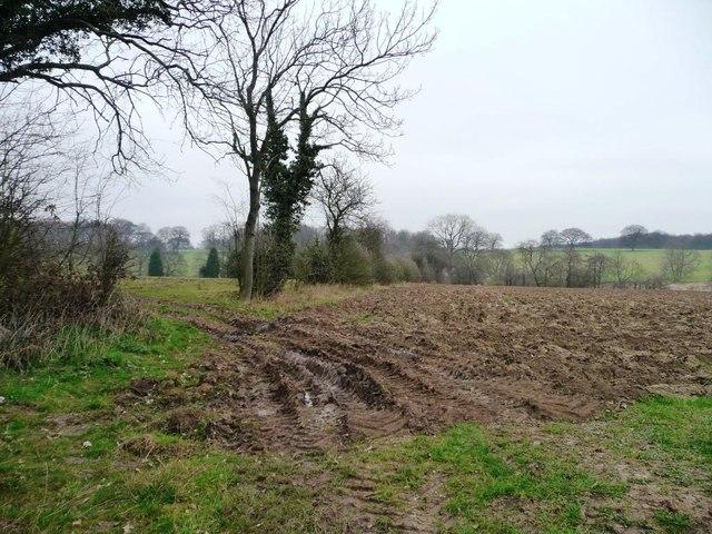 Muddy field corner