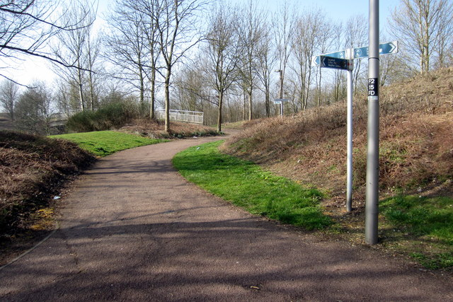 Paths by the roundabout