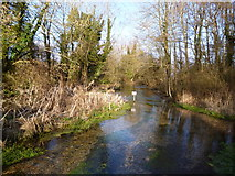 SU7251 : The River Whitewater at Deptford Bridge, Greywell by Dr Neil Clifton