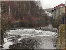 SJ8499 : River Irk Weir by David Dixon