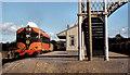 S7215 : Beet train, Campile by Albert Bridge