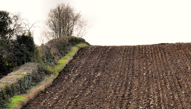 Ploughed field, Dundonald