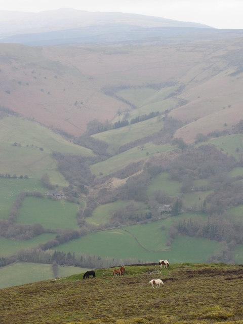 Cwm Beusych from Mynydd Pen-y-fal