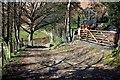 SJ1169 : Offa's Dyke Path at Aifft by Jeff Buck