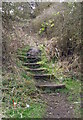 NZ3066 : Steps to Church Bank by Christine Westerback
