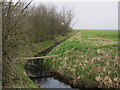 TL4972 : Ditch on Snoots Common by Hugh Venables