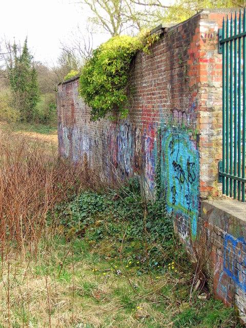 Graffitied Walls