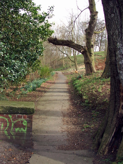 Path through Wallsend Dene