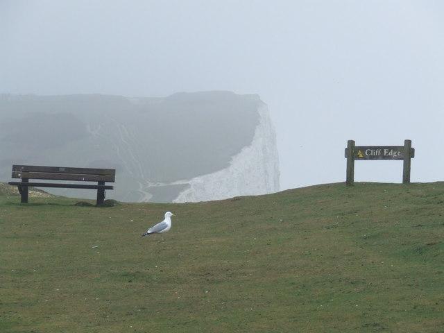 Cliff edge near Seaford