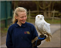 TQ3643 : Izzy and 'Hedwig' by Peter Trimming