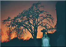 SD7336 : Church Yard - Whalley by Tom Howard