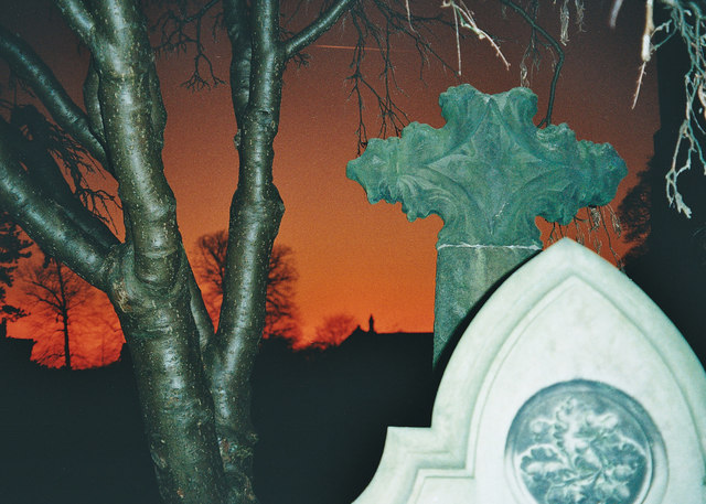 Red Sky - Grave Stones - Tree Bark
