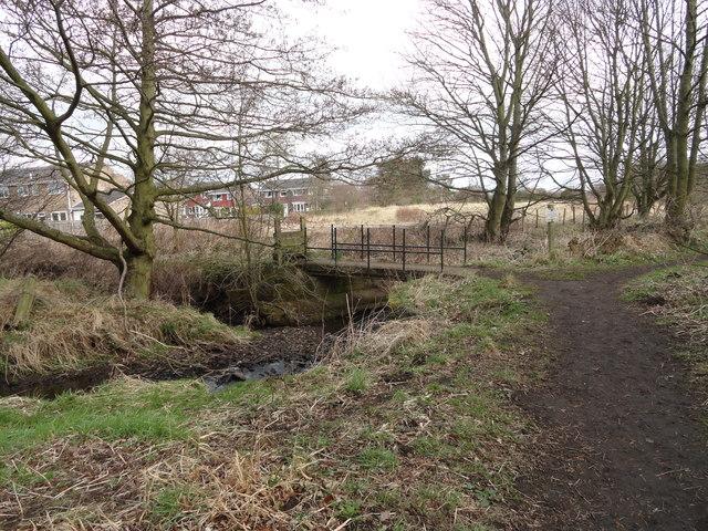 Footbridge in Tanfield Woods